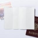Обложка для паспорта Самый милый котик