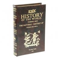 Сейф-книга Истории