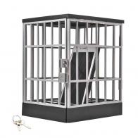Клетка для телефона