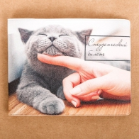 Обложка на студенческий Серый кот