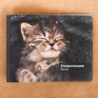 Обложка на студенческий Серый котёнок