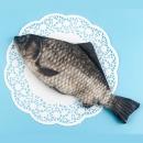 Пенал Рыба