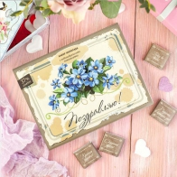 Шоколадный набор Поздравляю (12 шт)